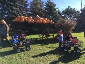 Early Intervention Pumpkin2